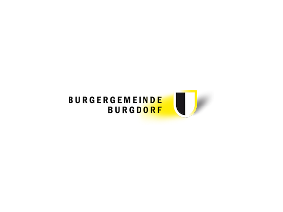 Wordpress Hosting: burgdorf