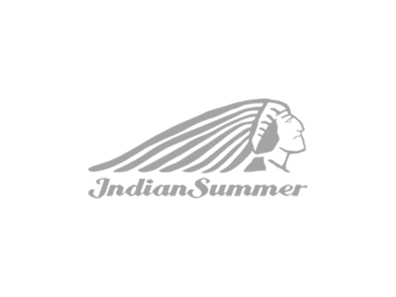 Wordpress Hosting: indiansummer.ch